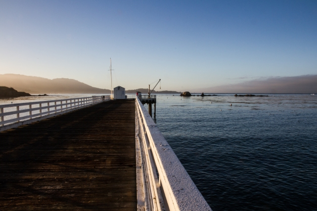 Stillwater South, one of Monterey's most popular dive sites
